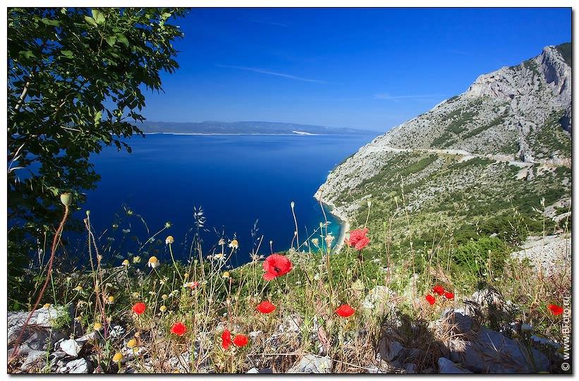 Список островов Хорватии Википедия