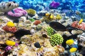 Фото моря для заливных 3d полов