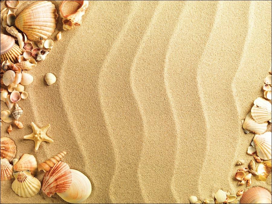 обои картинки с песком и ракушками красноярске есть