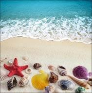 Жемчужина, звезда и ракушки и морская волна