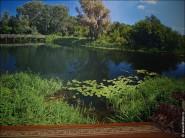 Фотообои на стену 3.5 метра на 3 с пейзажем лето, природа, река